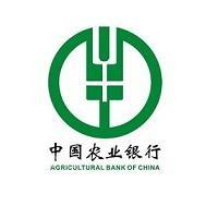 中国农业银行上海市分行-校园招聘网申